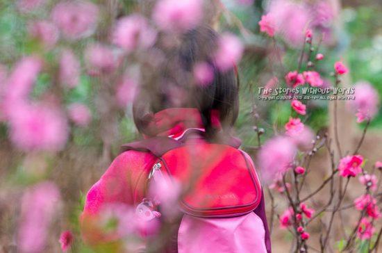 『花に囲まれて』 K-5Ⅱs DA★300mmF4 [ F5.6 1/125 ISO280]
