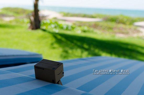 『リゾートダンボー』 K-5IIs FA31mmF1.8 [ F5.6 1/350 ISO160]