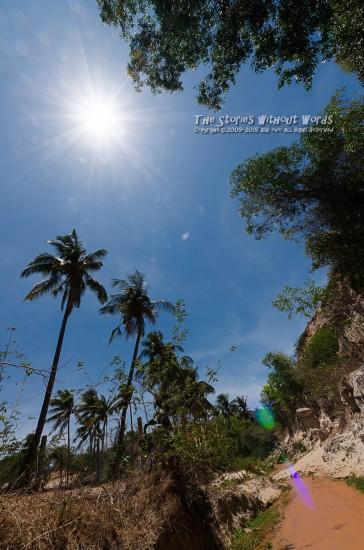 『真夏の太陽』 K-5IIs SIGMA 8-16mmF4.5-5.6 [8mm F11 1/250 ISO160]