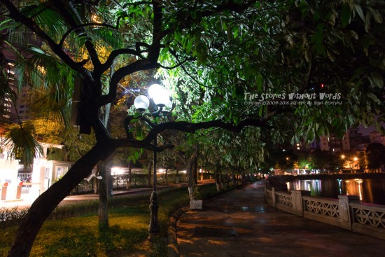 『深夜の散歩道』 K-1 [15 mm 1-6 秒 (f - 5.6) ISO 6400]