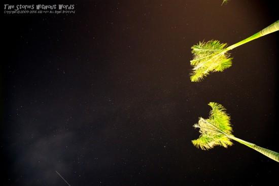 『流星』 K-1 [14 mm 30.0 秒 (f - 5.6) ISO 800]