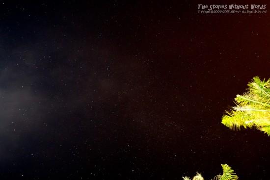 『満天の星』 K-1 [14 mm 30.0 秒 (f - 5.6) ISO 1600]