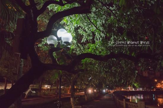 『深夜散歩』 α7RII [35 mm 1-60 秒 (f - 4.0) ISO 6400]