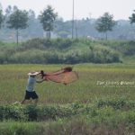 Thanh Hoá散歩
