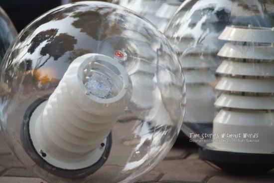 『でっかい電球』 A7RII / TAMRON SP500mmF8 [500mm F8 1/1000 ISO1250]