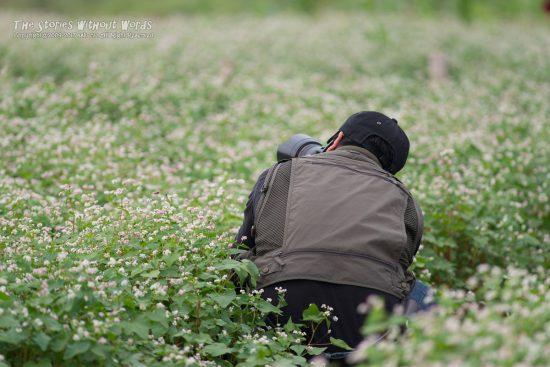 『花中カメラマン』 K-1 / DA*300mmF4 [ F4 1/500 ISO140]