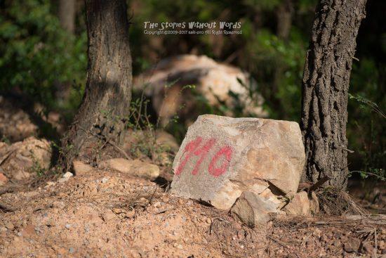 『何の番号だろうか』 K-1 / DFA100mmF2.8WR Macro [ F2.8 1/3000 ISO200]