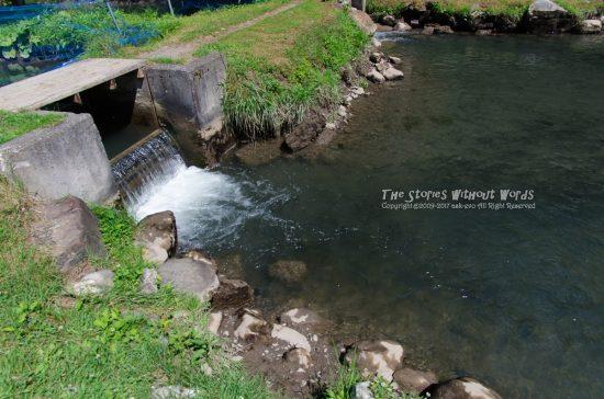 『釣り堀』 K-5IIs / SEL1635Z [16mm F5.6 1/350 ISO140]