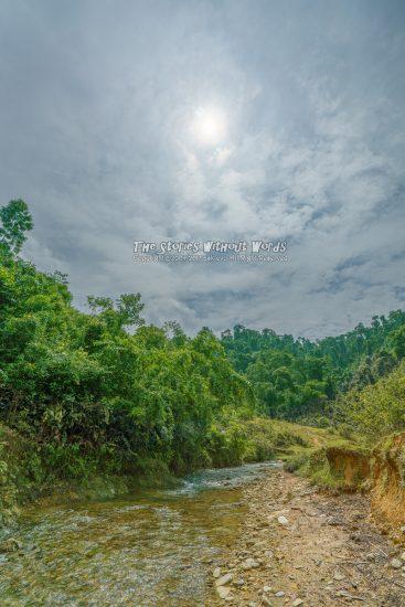 『川の流れ』 [16 mm 1-6000 秒 (f - 8.0) ISO 100]