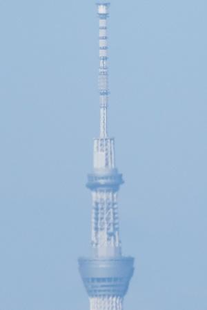 K_5_9811-20131027-500 mm-1-6000 秒 (f - 8.0)_RS_cr.jpg